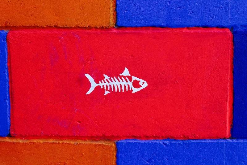 骨 取り 方 魚の 『喉に魚の骨』が刺さった時の正しい対処法とは?予防策も解説!